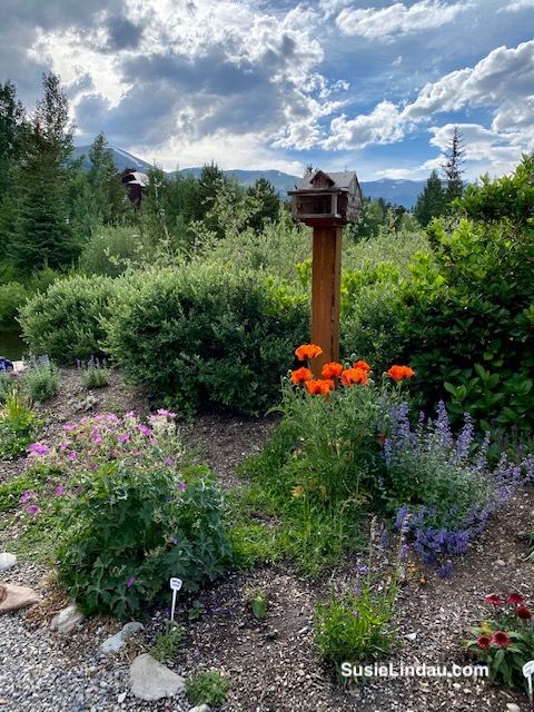 Secret gardens in Breckenridge, Colorado with a standing birdhouse and the mountains in the background